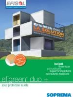 efigreen